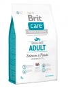 BRIT Care  Adult All breed Salmon&Potato