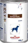 Gastro Intestinal canine